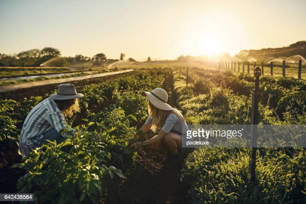 Farming isn't a job, it's a calling