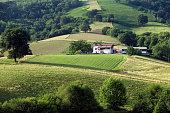 Farmland, Ainhoa
