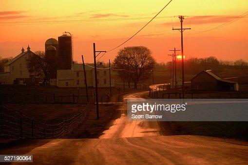 Farmland at dawn : Stockfoto