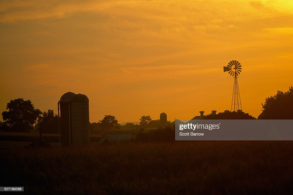 Farmland at dawn : Bildbanksbilder