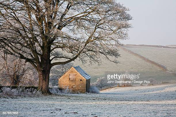 Farmland, barn and trees covered in frost