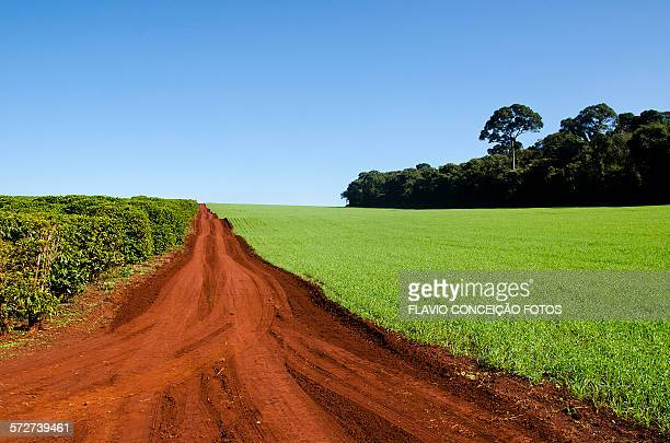 Farms agriculture Brazil