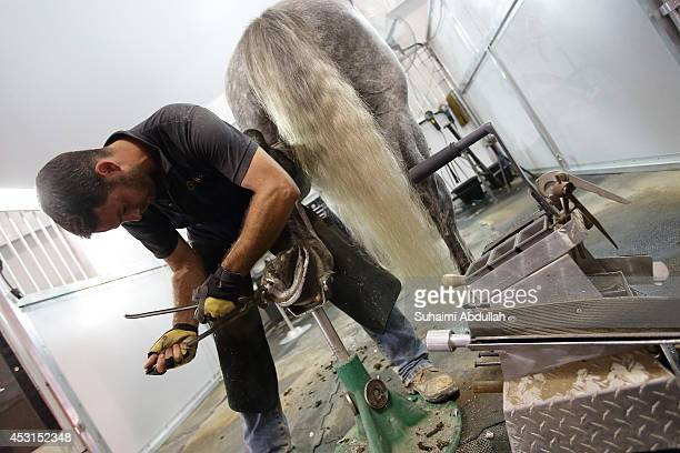A farrier places a shoe on a horse hooves during a media preview of the multimedia and acrobatic spectacular Cavalia A Magical Encounter Between...