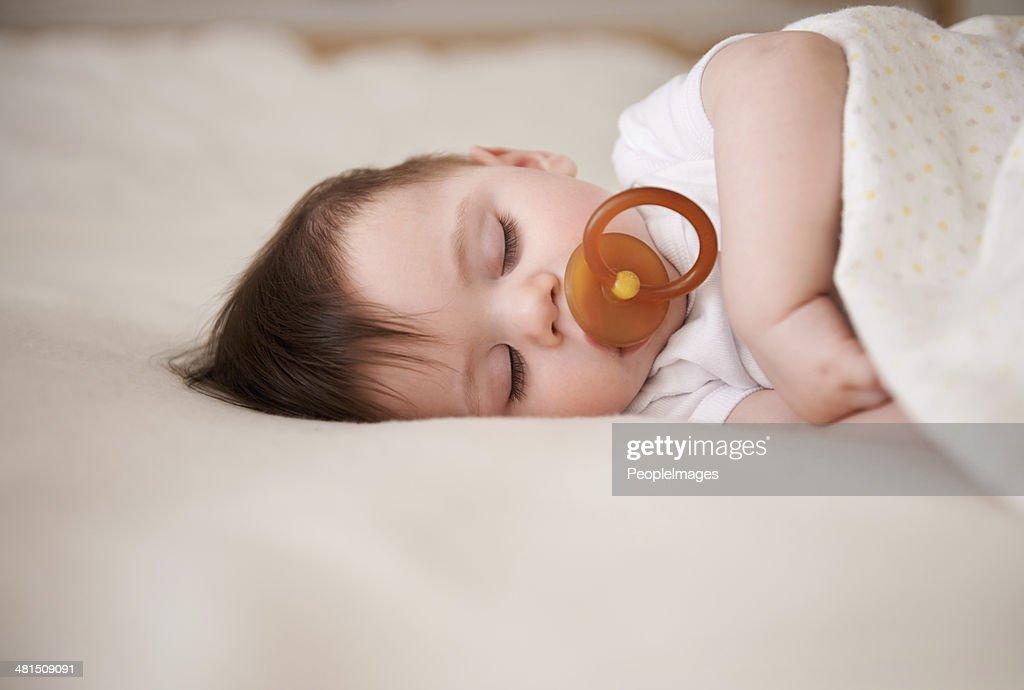 Fast asleep... : Stock Photo