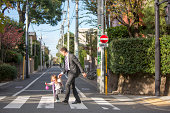 Father and daughter crossing zebra crossing