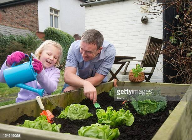 Vater und Tochter harvest