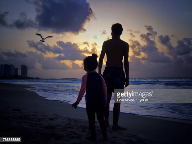 Father And Daughter Looking At Bird Flying Over Shore During Sunset