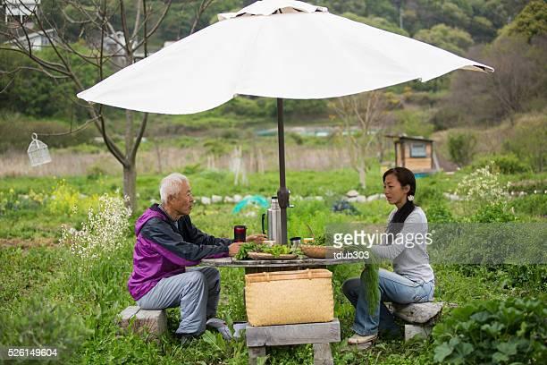 Vater und Tochter eine Pause während der Landwirtschaft Gemüse