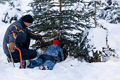 A father and his son cut a Christmas tree in a plantation of Christmas trees in a forest on December 8 2012 in Fischbach Germany Forestry officials...