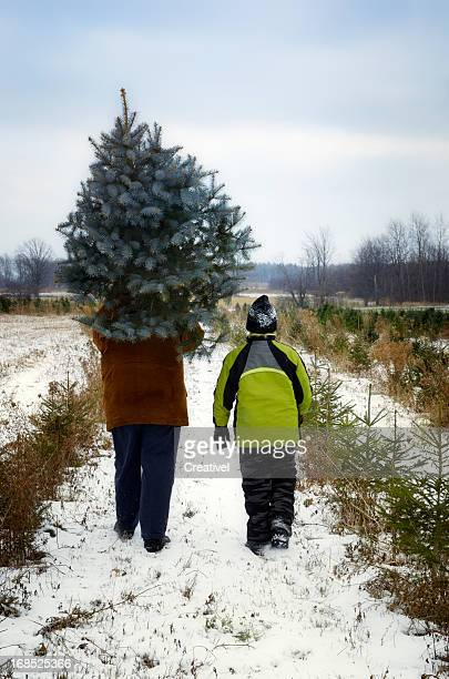 Father and son at Cut your own Christmas tree farm