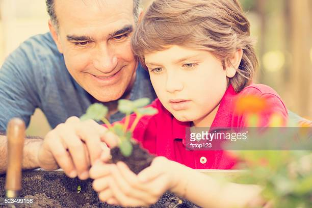 Father and son enjoy gardening in backyard. Homegrown organic vegetables.