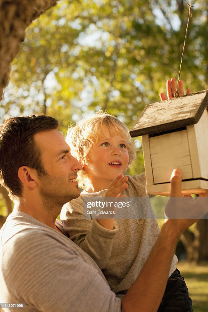 Father and son examining birdhouse : Stock Photo