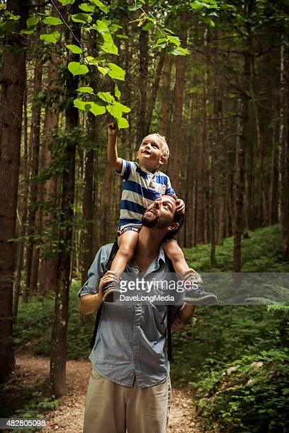 Vater und Sohn die Erkundung der Natur