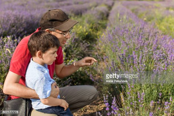 Father and son in a lavender field