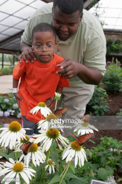 A father and son looking at some butterflies in the Butterfly House at the Botanical Gardens in Huntsville