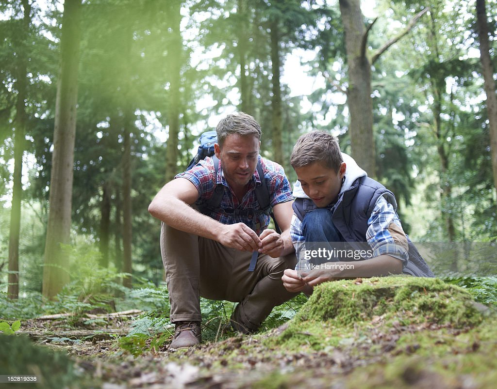 Father and son observing nature in forest location : Stock Photo