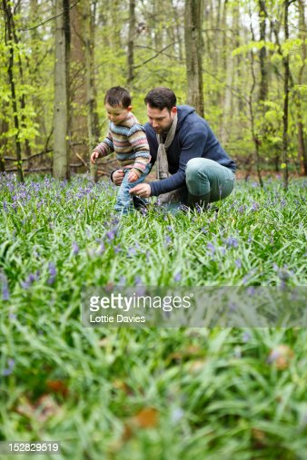 Father and son picking flowers in forest