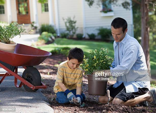 Father and son planting in garden