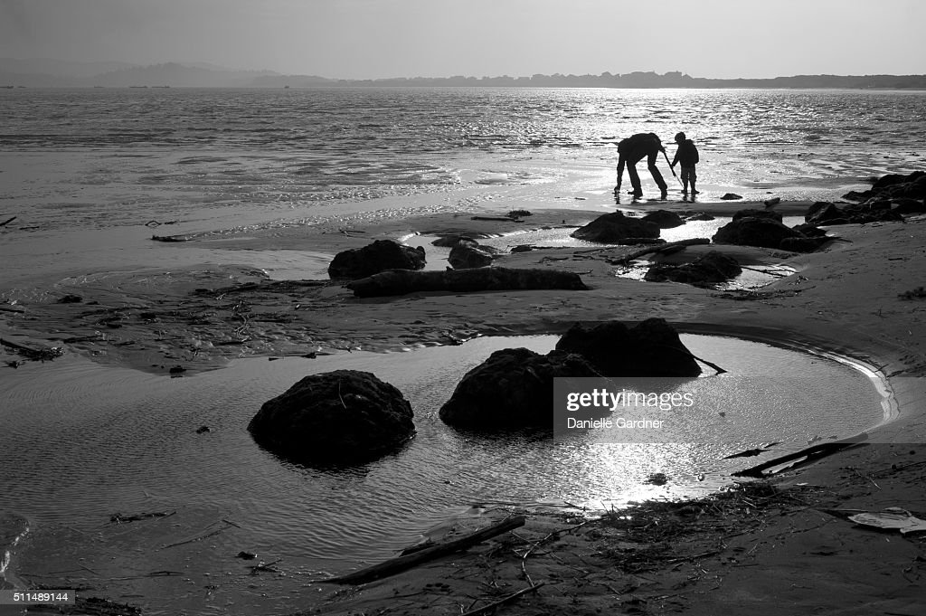 Father and Son Silhouetted on the Beach