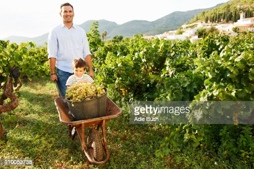 Father and son with grapes in vineyard