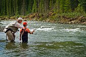 Father and sons fly fishing in a mountain river, Nordegg, Alberta, Canada