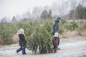 Father and two daughters carrying a fir tree along a dirt track in snow