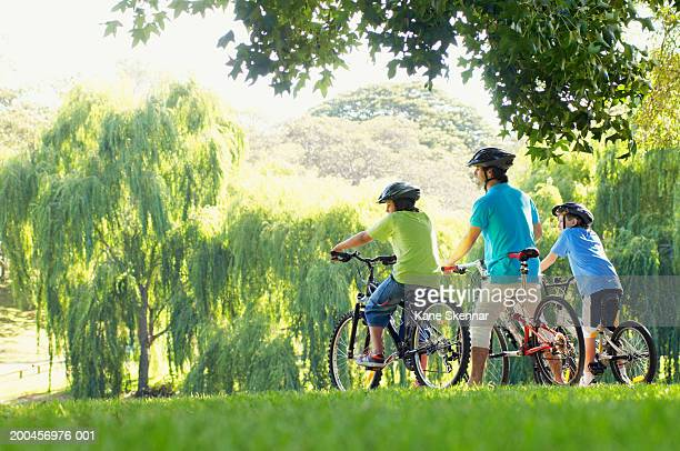 Father and two sons (10-12) riding bikes in park, rear view