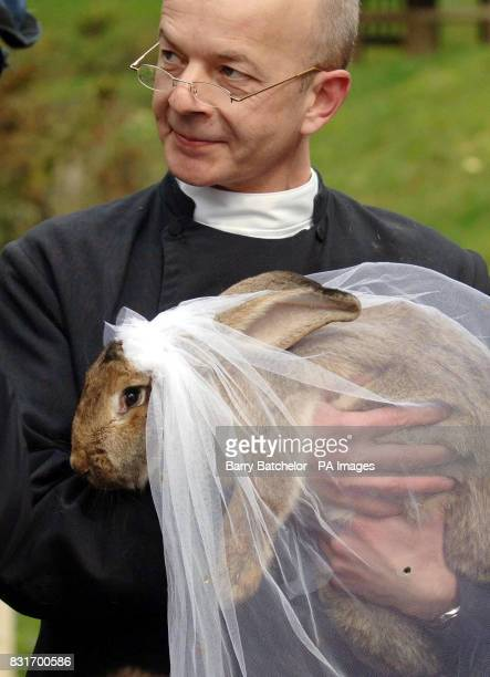 'Father' Andrew Hill with giant rabbit Amy at Wookey Hole Somerset Tuesday April 4 2006 Animal cruelty campaigners today criticised a stunt in which...