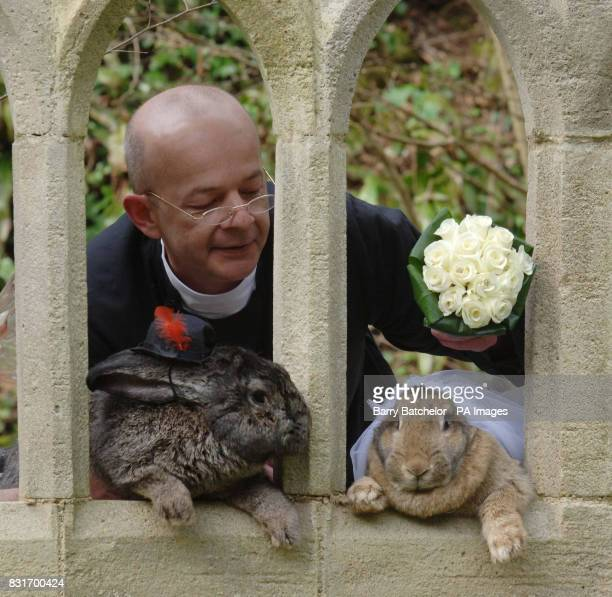 'Father' Andrew Hill with giant rabbits Roberto and Amy at Wookey Hole Somerset Tuesday April 4 2006 Animal cruelty campaigners today criticised a...
