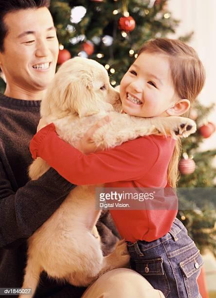 Father Giving His Daughter a Labrador Puppy as a Christmas Present
