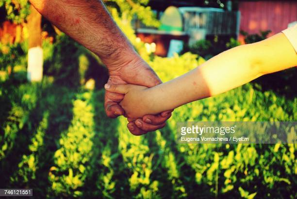 Father Holding Girls Hand