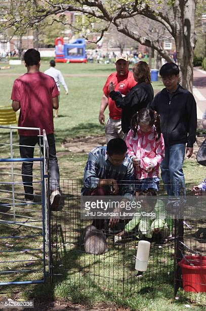 A father kneels with his young daughters to pet a rabbit in a metal pen on Wyman Quad on a bright sunny day as people mill around at Spring Fair a...