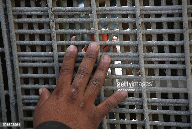A father on the American side of the border tries to touch his son's hand through the USMexico Border fence during a 'Opening the Door of Hope' event...