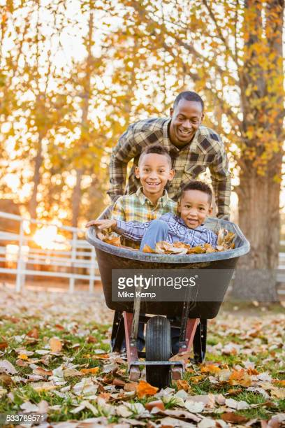 Father pushing sons in wheelbarrow in autumn leaves