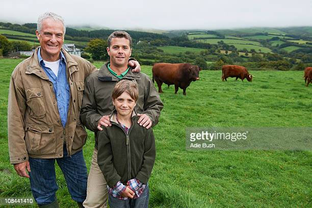 Father, son and Grandfather with cows
