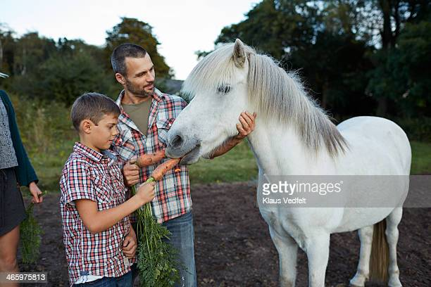 Father & son feeding horse with carrots