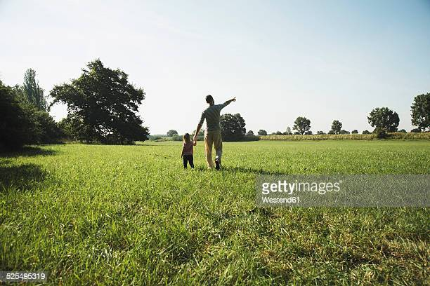 Father walking with his little daughter on a meadow