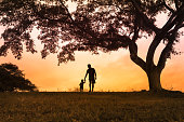Father walking together with his little boy outdoors at sunset