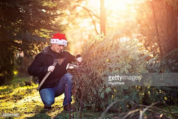 Pai com santa Chapéu de corte baixo a árvore de Natal.