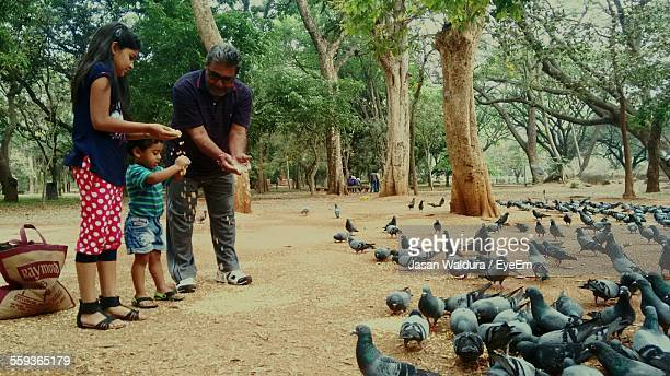 Father With Daughter And Son Feeding Pigeons In Park