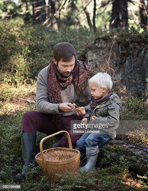 Father with son picking mushrooms