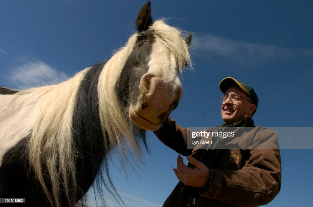 fe16cshorses_031108_LA_001_Charlie Parnell Cox greets 'Muireann' his Irish Cob horse a type of horse from Ireland He and his wife Jan Cox own...