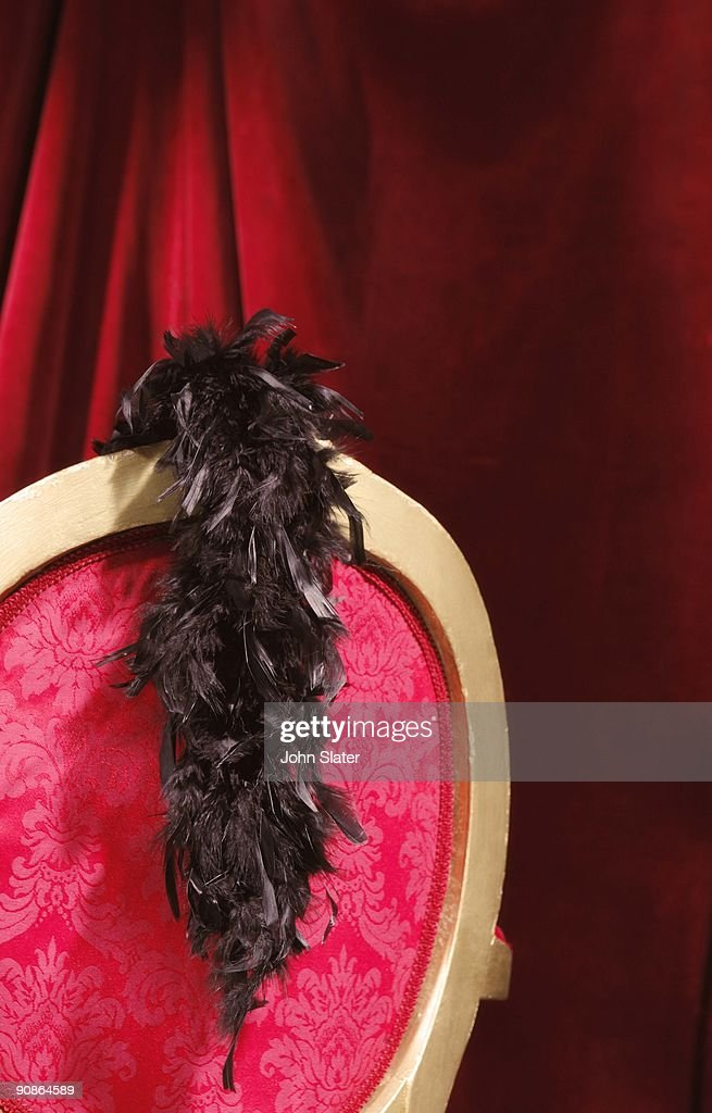 Feather boa on chair