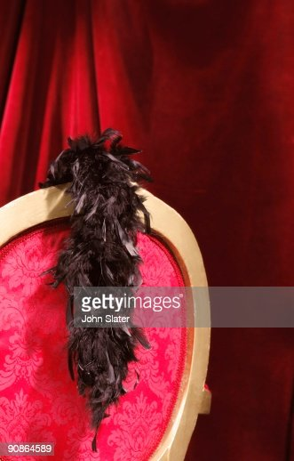 Feather boa on chair : Stock Photo