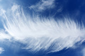 Feather cloud