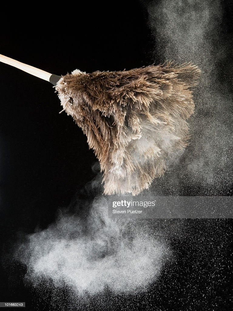 Feather duster with dust : Stock Photo