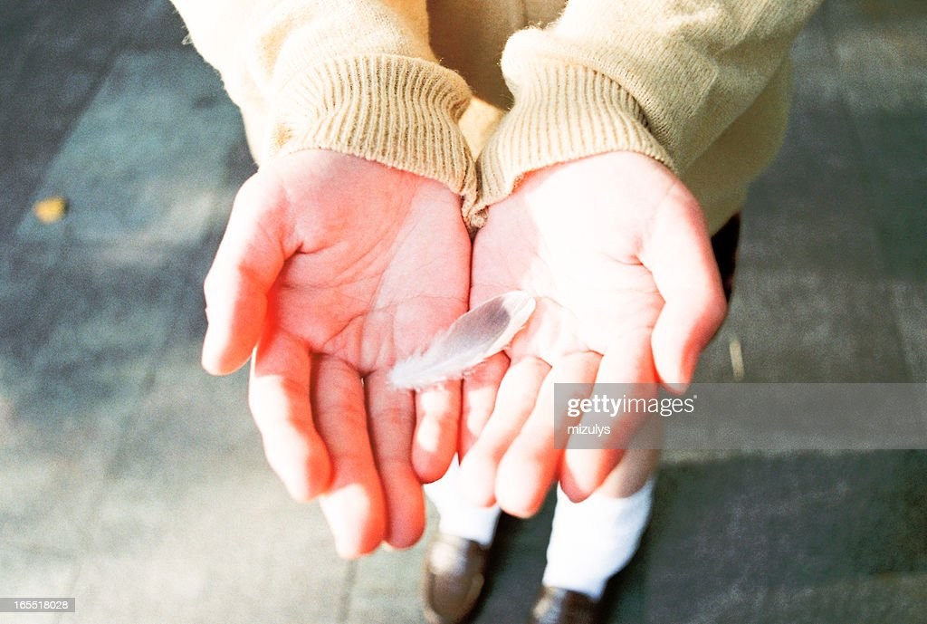 feather in hand : Stock Photo