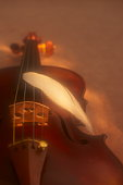 Feather on violin, soft focus