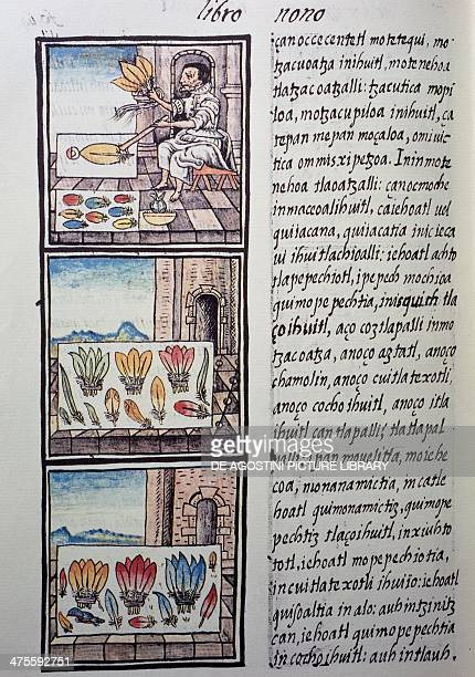Feather processing after the Spanish conquest page from the Florentine Codex bilingual version in Spanish and Nahuatl General History of the Things...