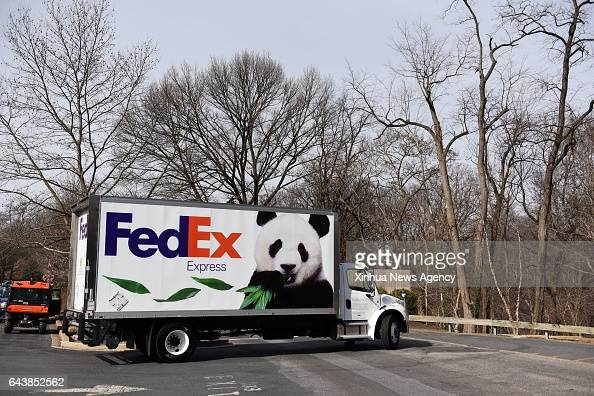 C Feb 21 2017 The truck carrying giant panda Bao Bao leaves the zoo to airport in Washington DC the United States Feb 21 2017 Americanborn giant...